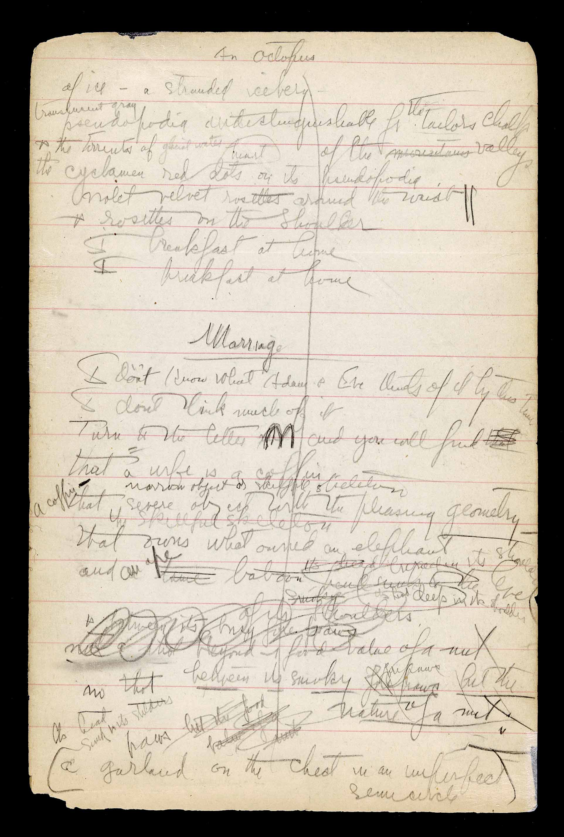 "7.4.4, image 0012; Poetry Notebook from 1922-1930. On this page Moore is drafting both ""An Octopus"" and ""Marriage."""